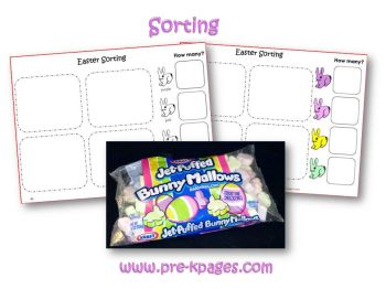 bunny mallow sorting activity in preschool