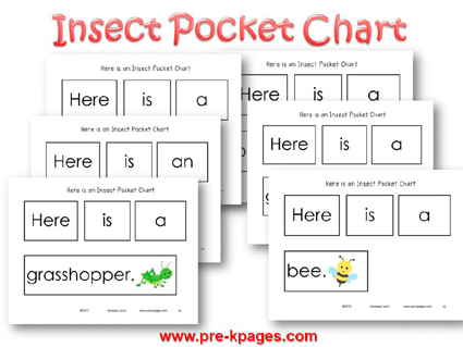 Insect Pocket Chart Cards for #preschool and #kindergarten