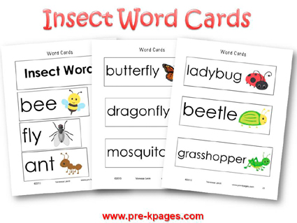 Insect Word Wall Cards for #preschool and #kindergarten