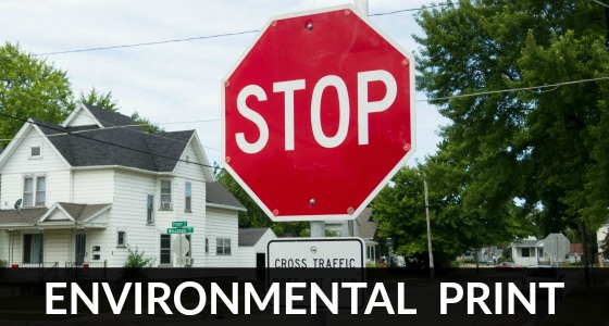 What is Environmental Print?