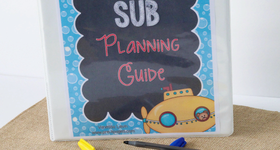 Printable Substitute Teacher Planning Guide for Preschool
