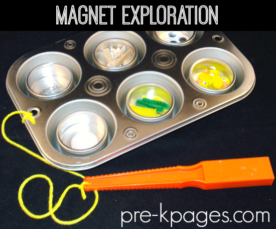Muffin Tin Magnet Exploration Science Preschool