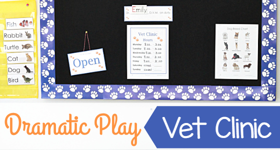 Vet Clinic Pretend Center