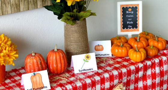 Pumpkin Picking in Preschool