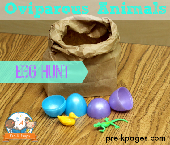 FUN Oviparous Egg Hunt Game for #preschool and #kindergarten + FREE printable