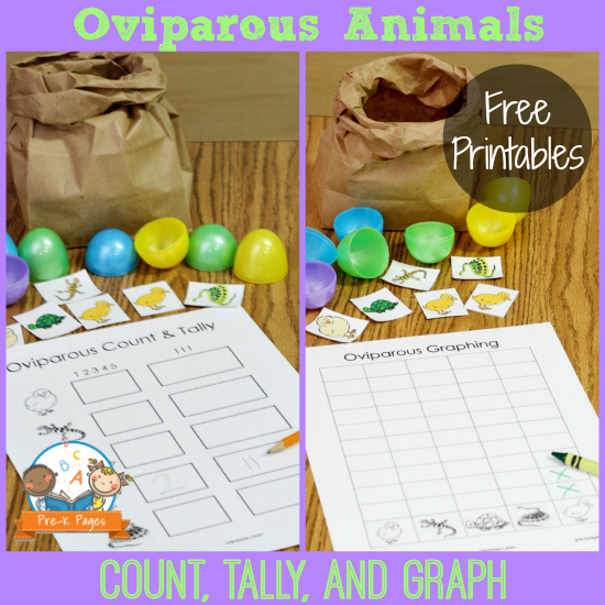 Free Printables for Teaching about Oviparous Animals in #preschool and #kindergarten