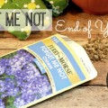 Printable Forget Me Not Seed Packets for Graduation