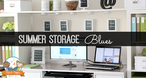Summer Storage and Organization Blues