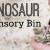 Dinosaur Theme Sensory Bin for Preschool
