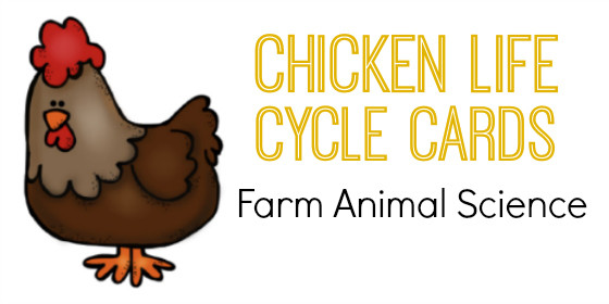Farm Animal Science: Chicken Life Cycle Cards