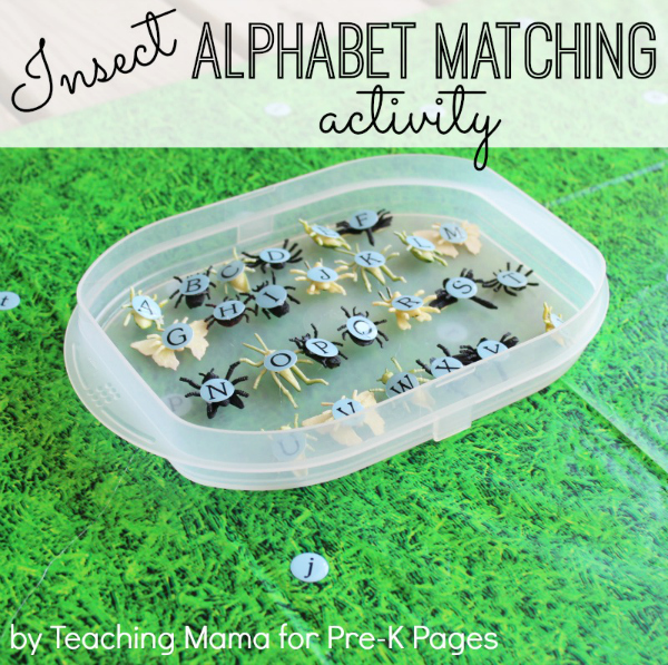 Insect Alphabet Matching Game