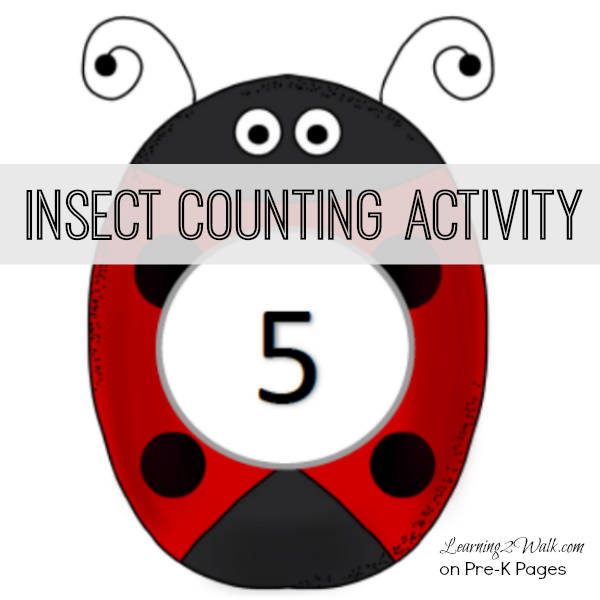 Insect Counting Activity