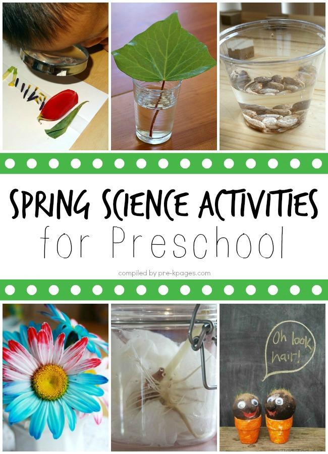 spring lessons for preschoolers science activities for preschoolers 553