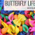 butterfly life cycle sensory play