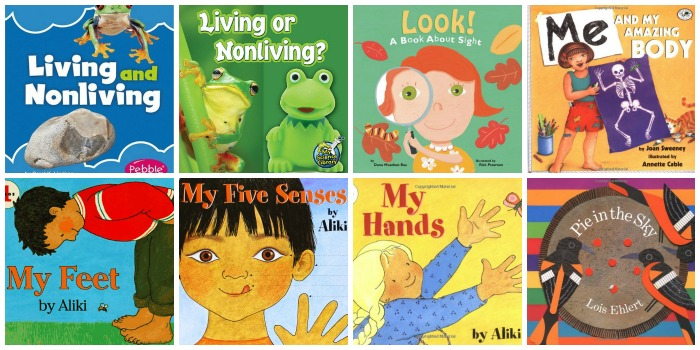 5 Senses Science Books for Preschool