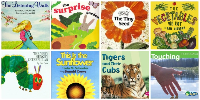 Age Appropriate Science Books for Preschoolers