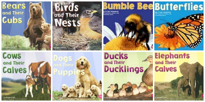 Science Books About Animals for Preschool