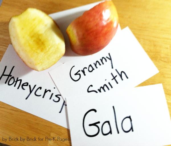 magnet graph apples