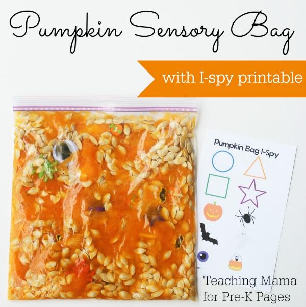 pumpkin sensory bag