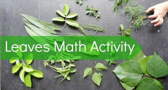 math activity with leaves preschool