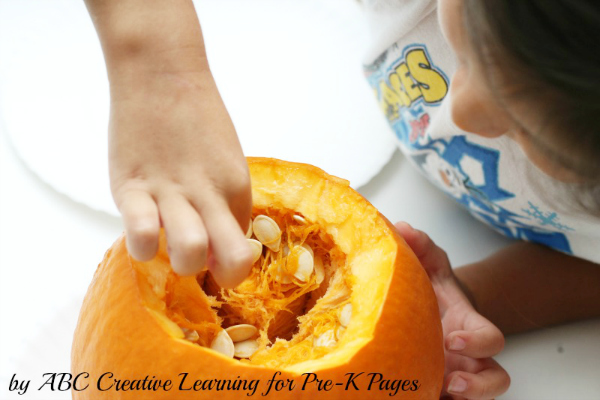 Pumpkin Science looking inside