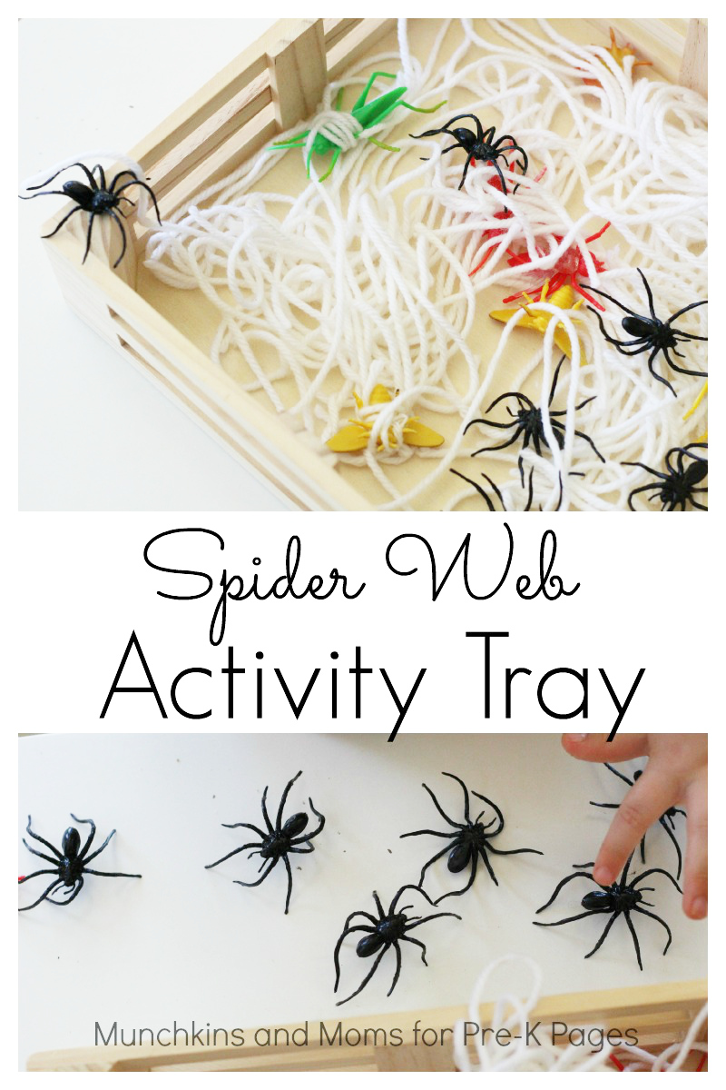 spider web activity tray for preschool
