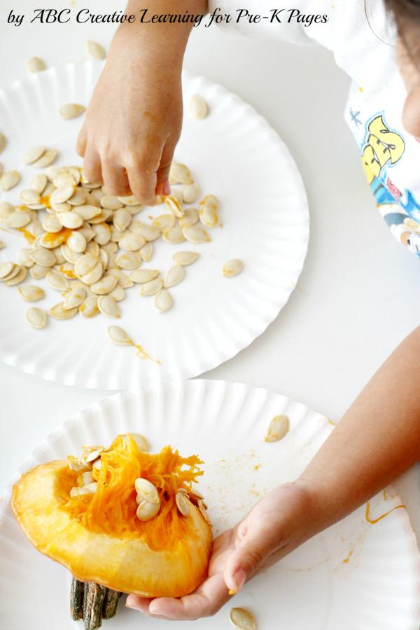 pumpkin science removing seeds