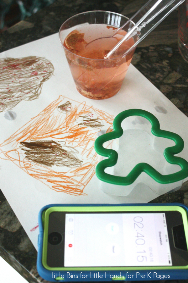 Dissolving Gingerbread Man Science Activity Results