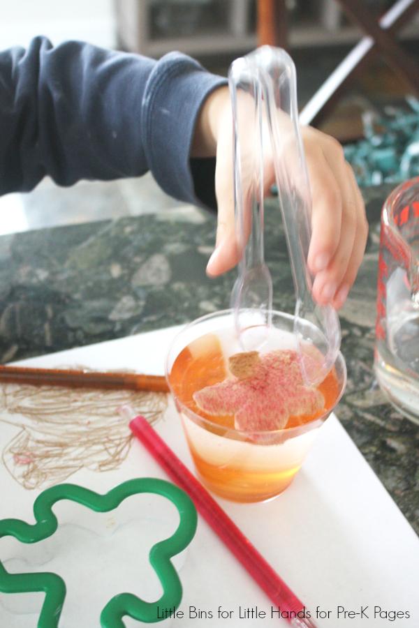 Dissolving Gingerbread Man Science Activity using tongs