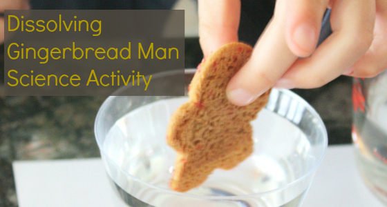 Gingerbread Man Science Experiment for Preschool