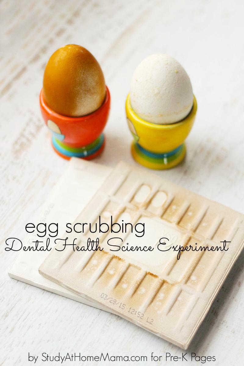 Egg Scrubbing dental health science for preschool