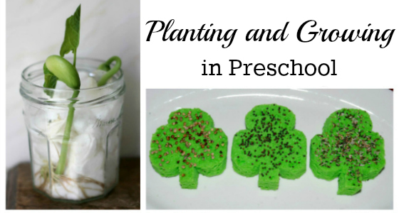 Science for Kids: Planting and Growing in Preschool