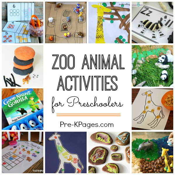 Zoo Craft Experiments