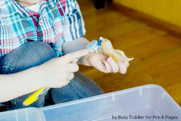 Pet Sensory clean the animals