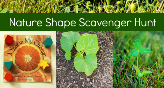 Nature Shape Scavenger Hunt