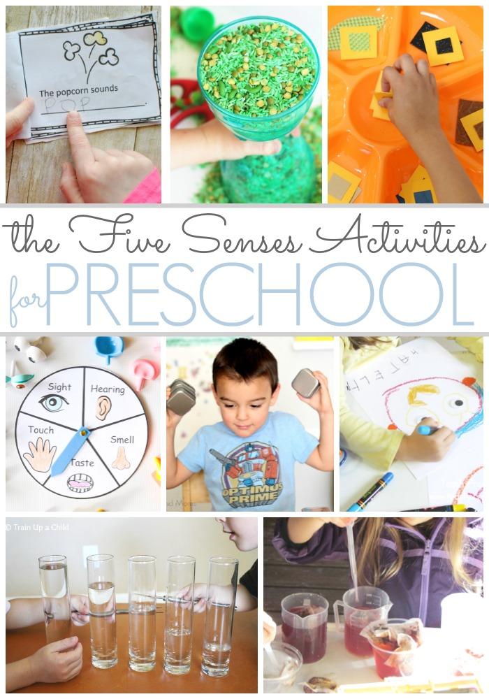 senses activities for preschoolers preschool activities that feature the five senses pre k 5