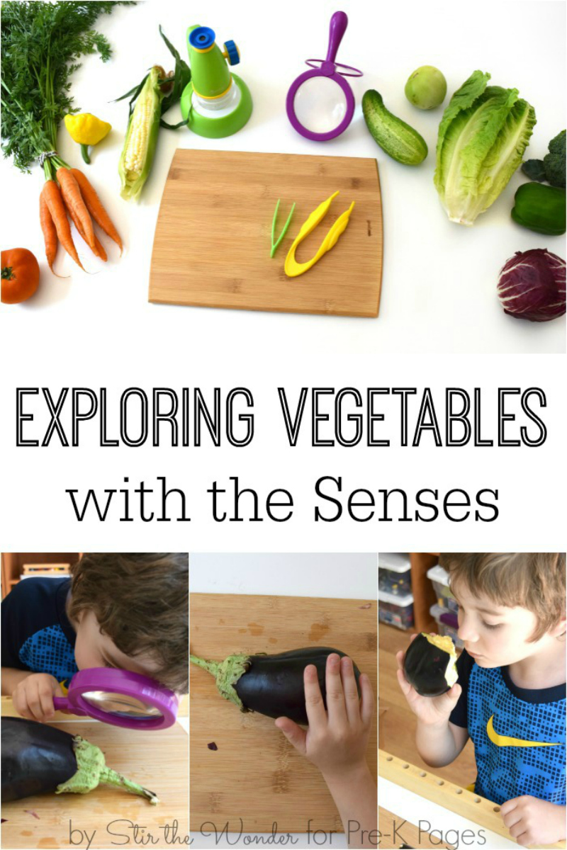 Explore vegetables science for kids
