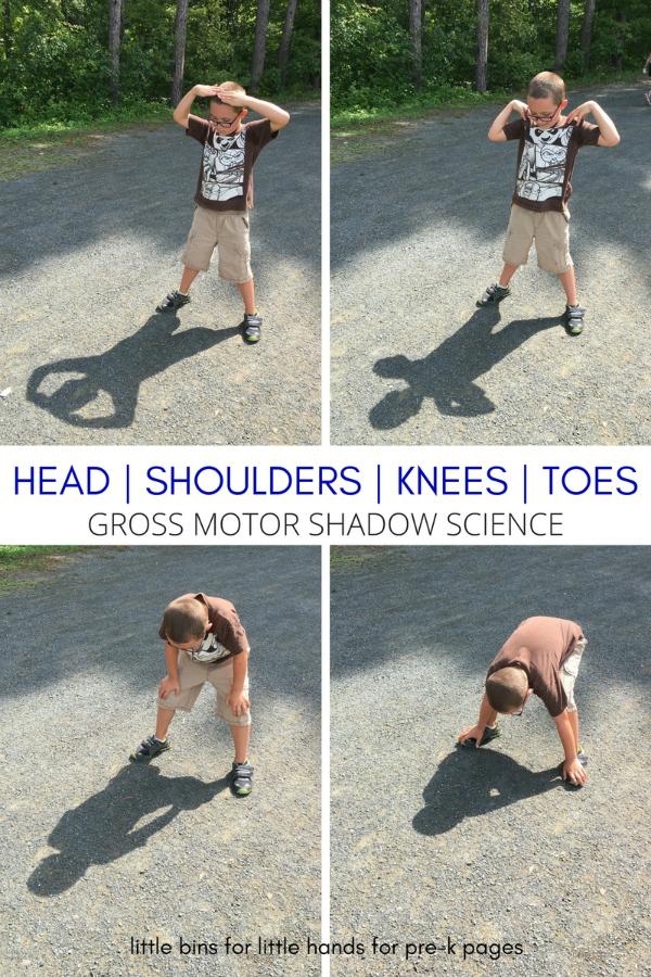 head shoulders knees toes shadow play