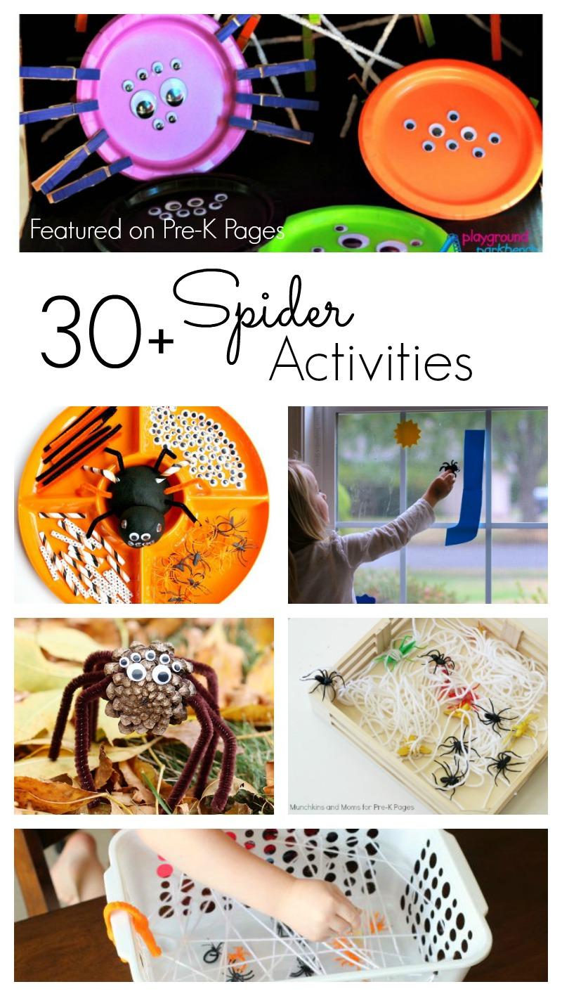spider activities for preschool