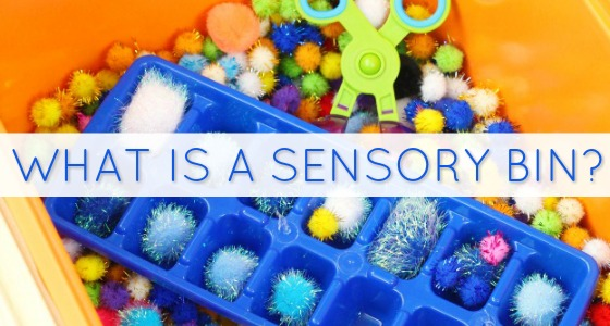What to put in a sensory bin