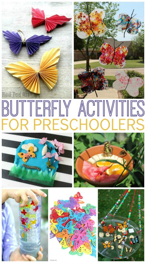 Activities About Butterflies for Preschoolers - Pre-K Pages