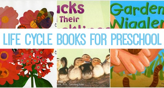 Books About Animal Life Cycles