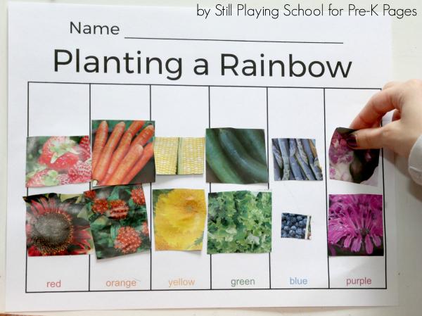 flowers color sort activity