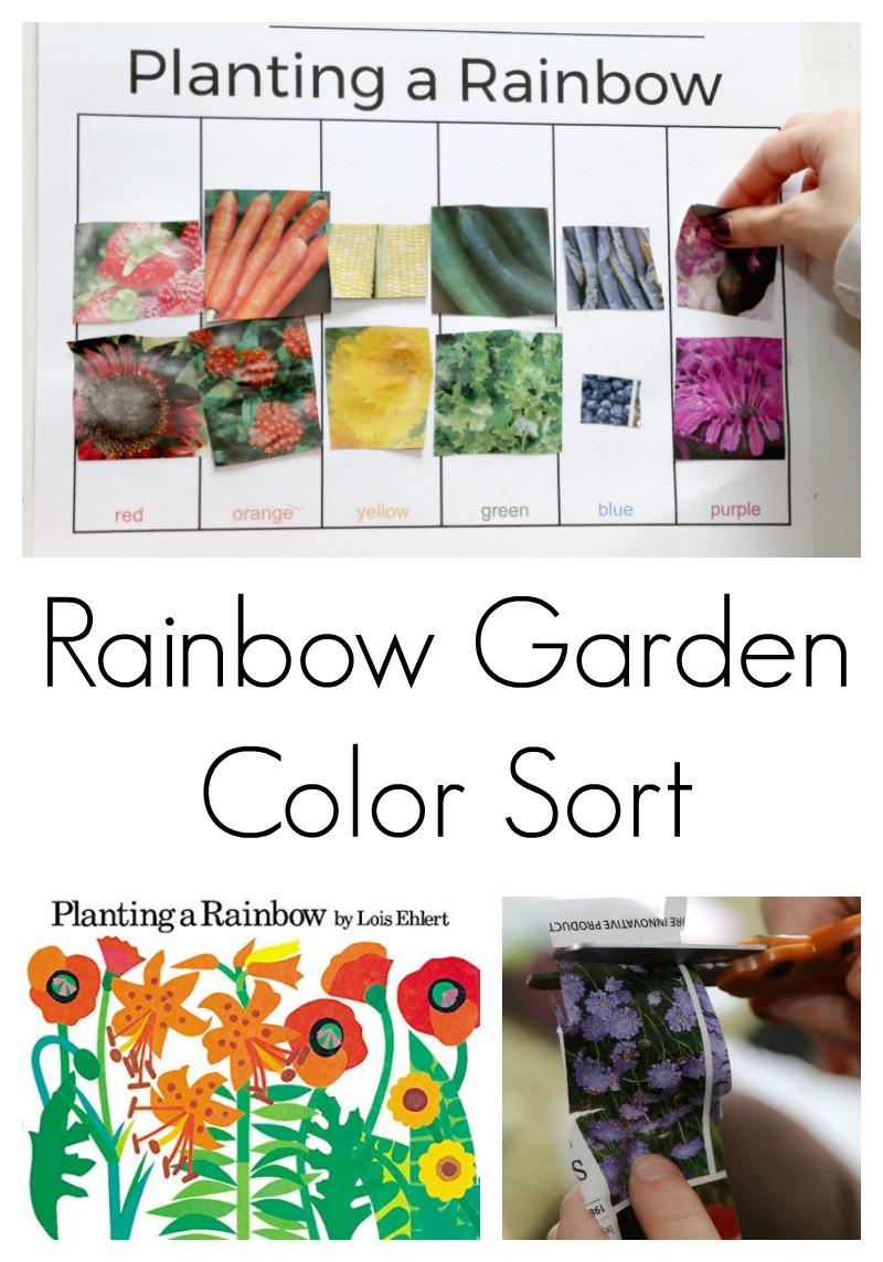 color sort activity for preschool