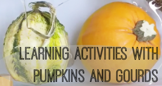 gourds and pumpkins activities