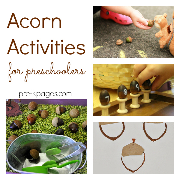 acorn activities pre-k fall autumn