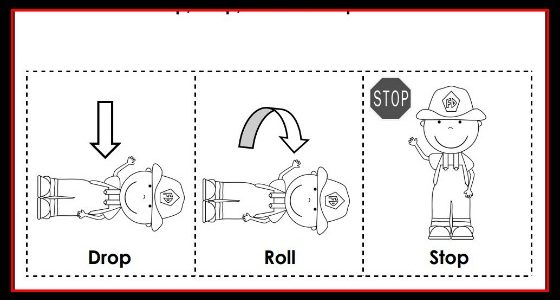 Printable Cut Paste Stop Drop and Roll Sequence
