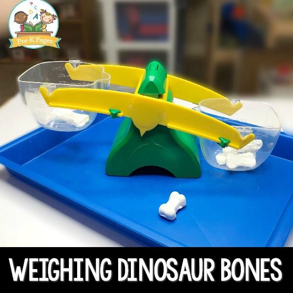 Weighing Dinosaur Bones