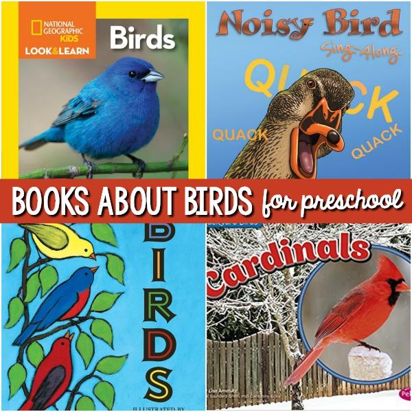 preschool bird books books about birds for preschoolers pre k pages 170