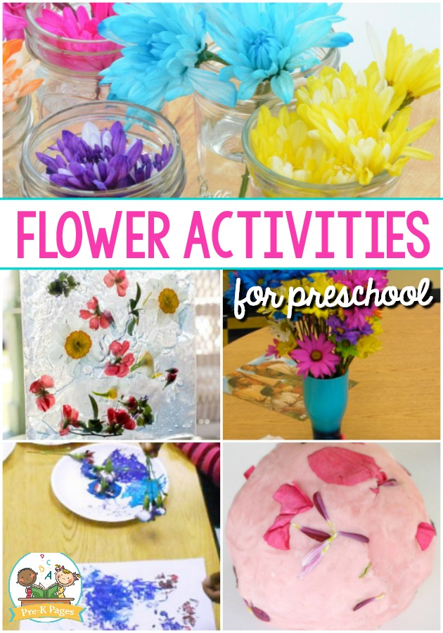 flower activities for preschoolers pre k pages. Black Bedroom Furniture Sets. Home Design Ideas